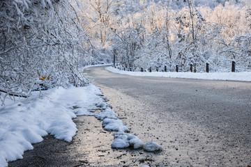 Scenic road in winter forest