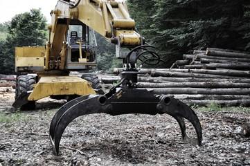 Mezzo meccanico per spostare la legna
