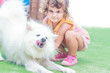 young child girl having fun with white dog on natural background