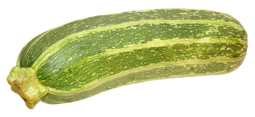 Fresh Marrow Squash