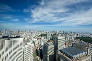 東京都庁展望室からの展望