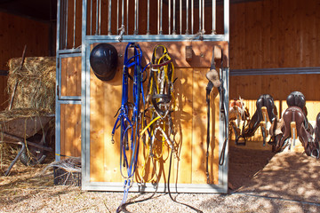 bridles and saddles in the stud farm