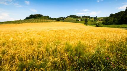 Landscape,Styria,Austria.