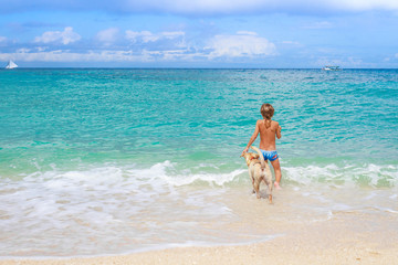 young happy child boy having fun with white dog in the sea, summ