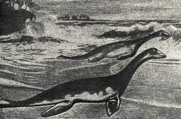 Plesiosaurs