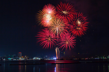 Blooming firework mixed color of celebration night