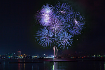Blooming firework blue color of celebration night