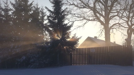 morning sunrise and winter fog in village