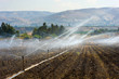 Irrigation in Israel - 73971582