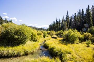 Valley of the 5 Lakes Trail, Jasper National Park, Alberta,