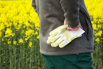 Farmer with work gloves prior rape field