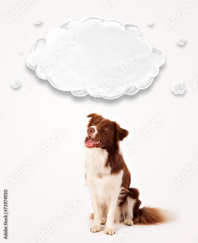 canvas print picture Cute border collie with empty cloud