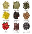 different spices set