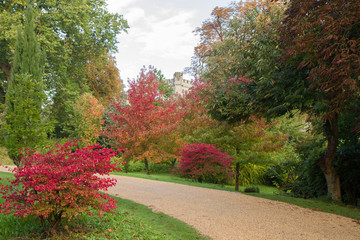 Gardens of Arundel Castle in autumn