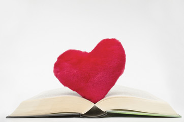 Lieblingsbuch