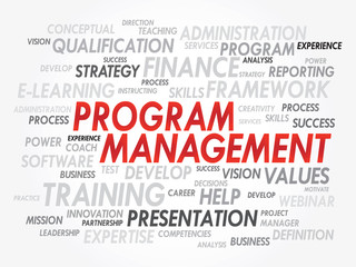 Word cloud of Program Management related items, vector