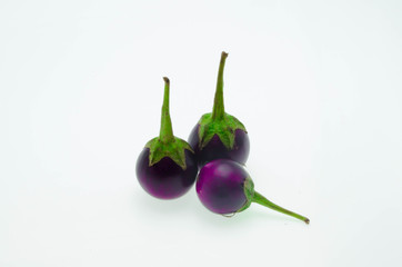 aubergine violet  on a white background