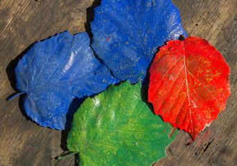 Bunte Blätter auf Holzuntergrund