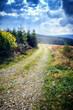 Beautiful rural landscape