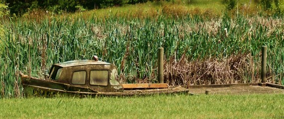 Rusty old boat in pond.