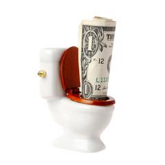 Flush a dollar