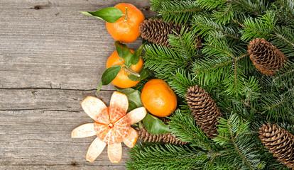 mandarins and christmas tree branches