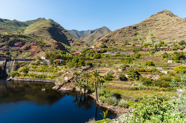 Palm tree valley and lake mountains, La Laja, La Gomera island