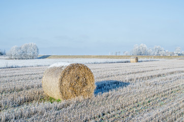 Bale of hay in a field, a winter landscape
