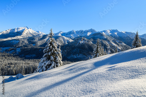 Winter landscape of Rusinowa polana, Tatra Mountains, Poland - 73992108