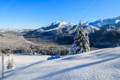 winterlandschaft-von-rusinowa-polana-tatra-berge-polen