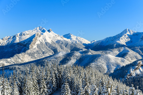 Winter landscape of Rusinowa polana, Tatra Mountains, Poland - 73992169