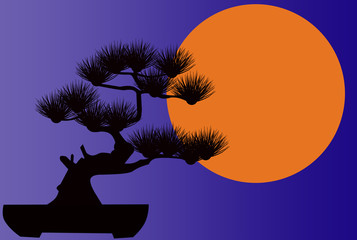 romantic pictures silhouette