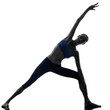 woman parighasana gate pose  yoga silhouette