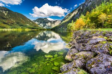 Autumn trees near the mountain lake in Alps