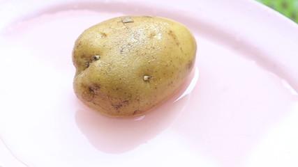 potatoes under running water lies on a pink plate