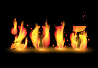 Happy New Year 2015 by blaze fire flame