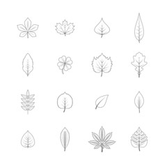 Plant leaves line icons set