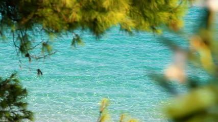 Sea, beaches and summer