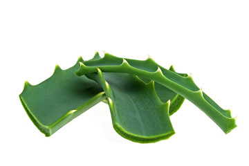 Aloe vera leaf and slices on a white background