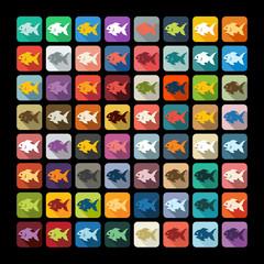 Flat design: fish