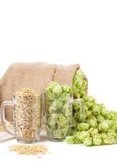 Mugs with barley and hop.