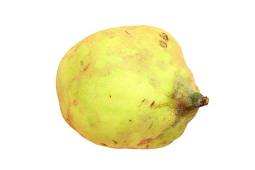 quince over white background