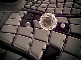 virus, Hepadnavirus
