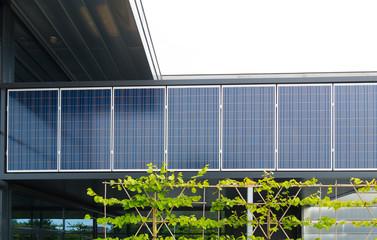 solar panels on office building