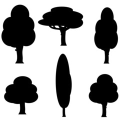 Vector image of a tree.