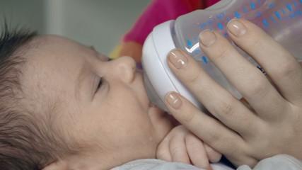 Maternal Care