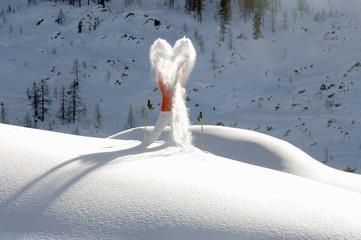Frau steht auf schneebedecktem Berg