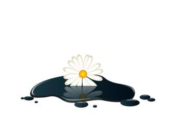petrole fleur
