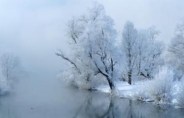 Deutschland, Bayern, Fluss Amper, schneebedeckter Baum