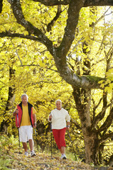 Senioren Paar Nordic Walking im Freien